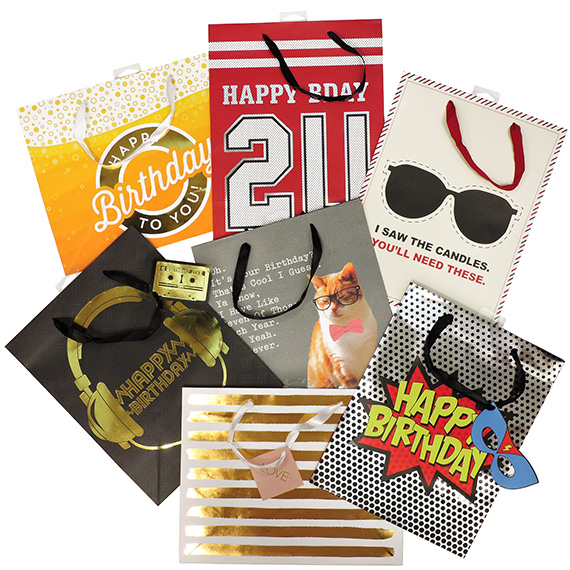 Gift Bag 7 Assorted Designs 10x13