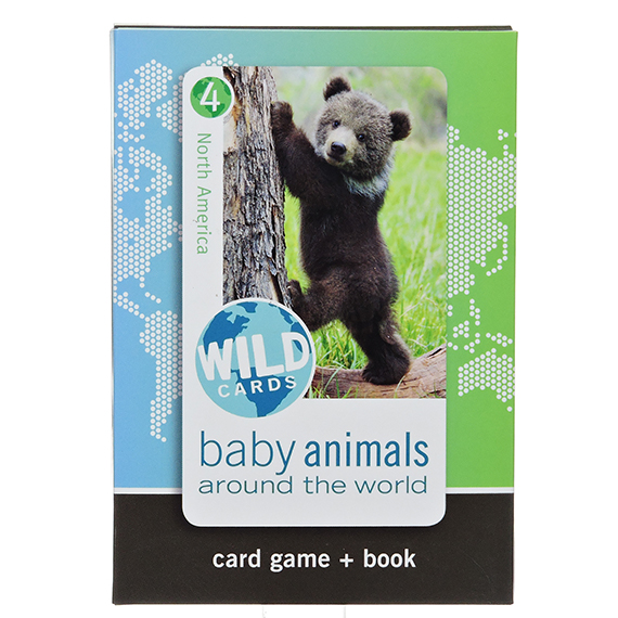 Wild Card: Baby Animals