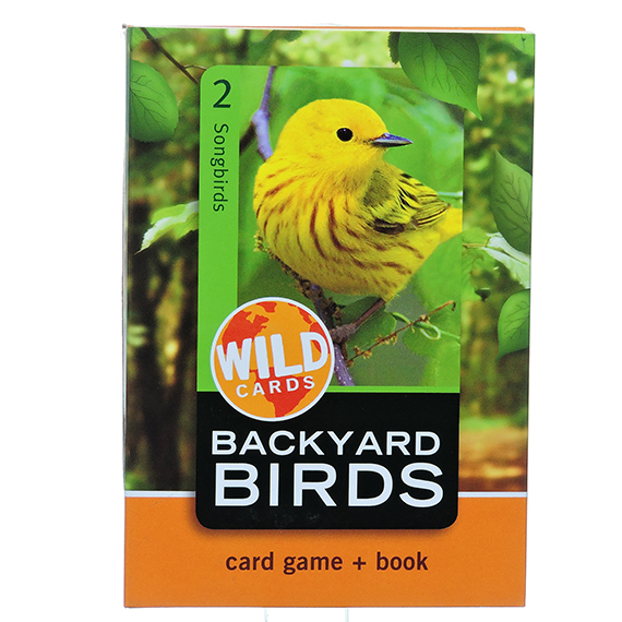 Wild Card: Backyard Birds